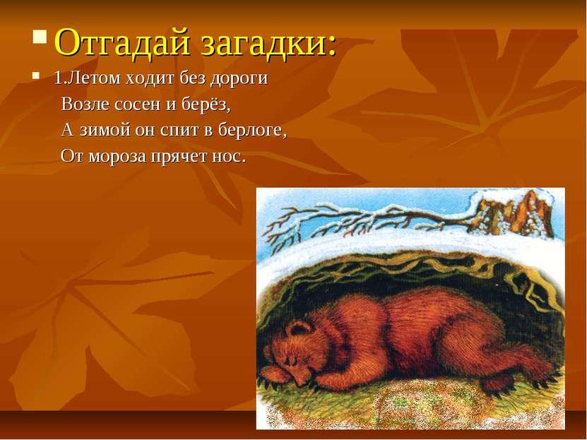 Отгадай загадки: 1.Летом ходит без дороги Возле сосен и берёз, А зимой он спи...