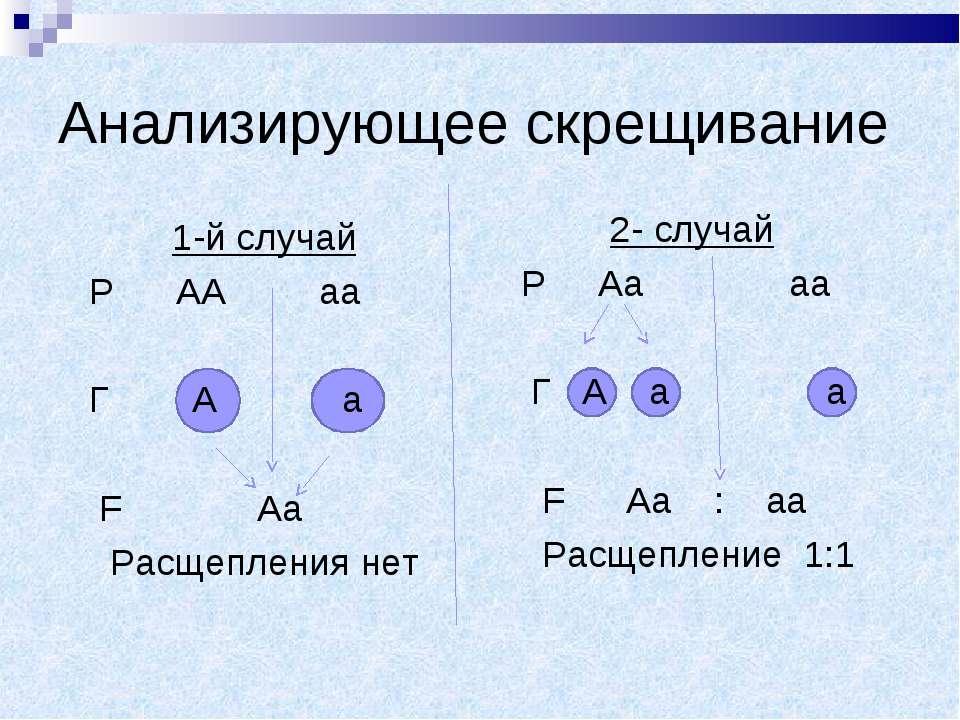 Анализирующее скрещивание 1-й случай Р АА аа Г А а F Аа Расщепления нет 2- сл...