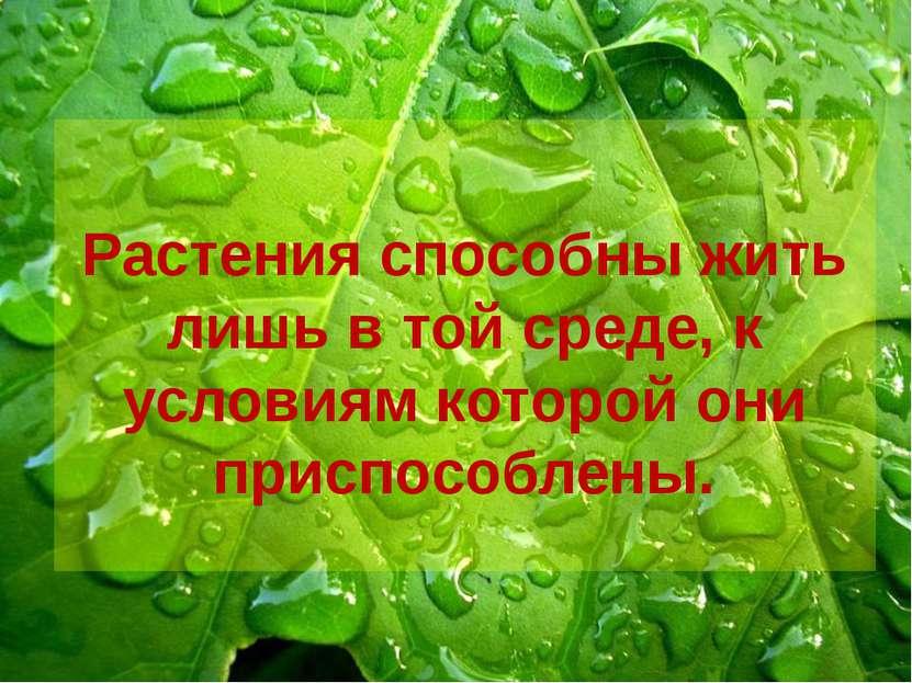 Растения способны жить лишь в той среде, к условиям которой они приспособлены.