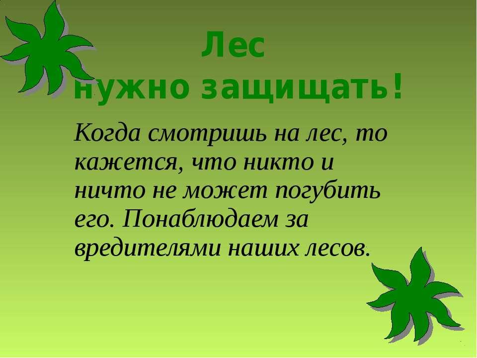 Лес нужно защищать! Когда смотришь на лес, то кажется, что никто и ничто не м...