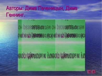Авторы: Дима Печеницын, Дима Геннинг.