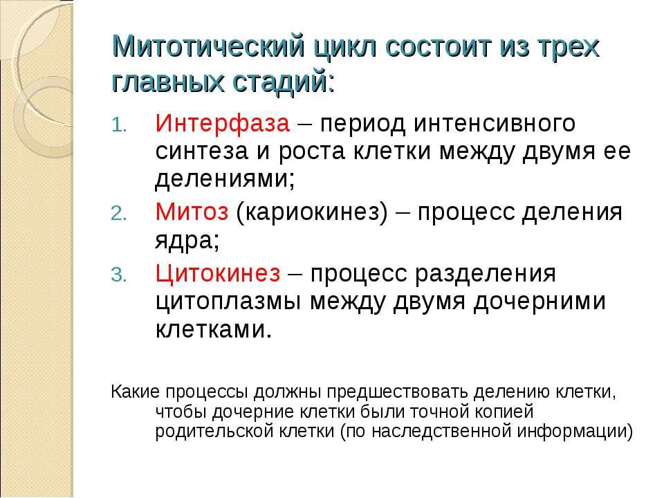 Митотический цикл состоит из трех главных стадий: Интерфаза – период интенсив...