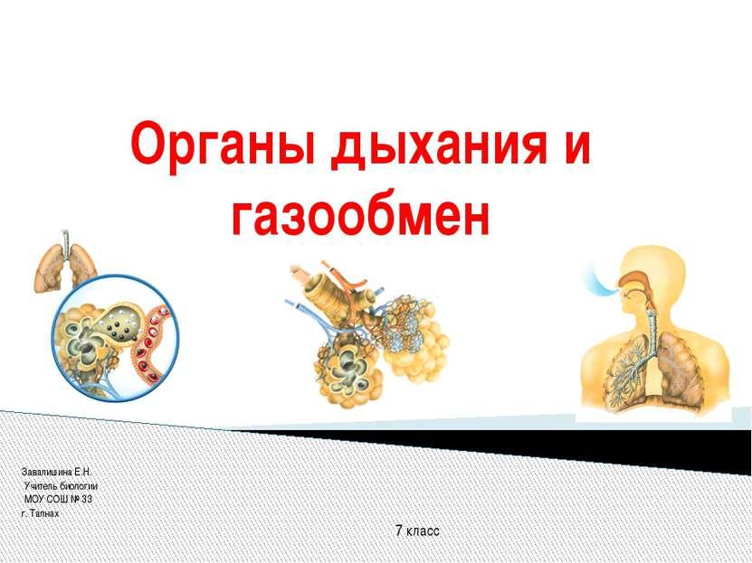 Органы дыхания и газообмен Завалишина Е.Н. Учитель биологии МОУ СОШ № 33 г. Т...