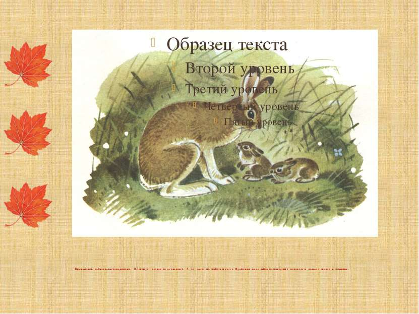 Притаились зайчата-листопаднички. Не скачут, следов не оставляют. А то лиса и...