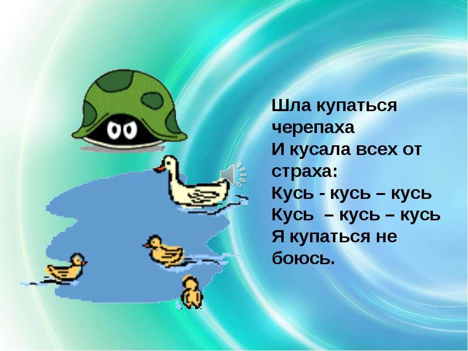 Шла купаться черепаха И кусала всех от страха: Кусь - кусь – кусь Кусь – кусь...