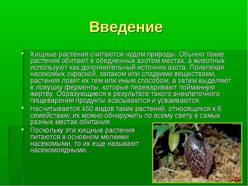 Введение Хищные растения считаются чудом природы. Обычно такие растения обита...