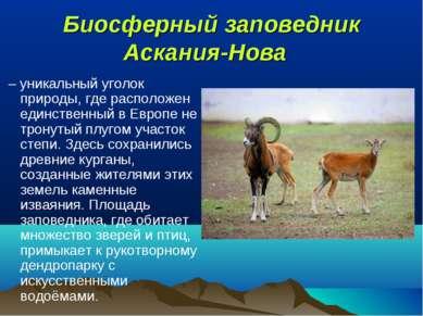 Биосферный заповедник Аскания-Нова – уникальный уголок природы, где располо...