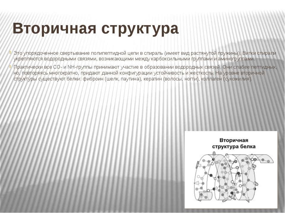 Вторичная структура Это упорядоченное свертывание полипептидной цепи в спирал...