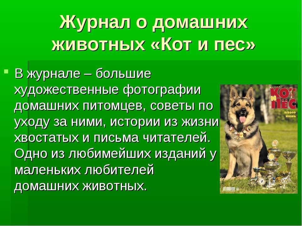 Журнал о домашних животных «Кот и пес» В журнале – большие художественные фот...