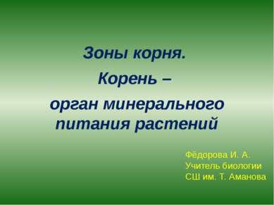 Зоны корня. Корень – орган минерального питания растений Фёдорова И. А. Учите...