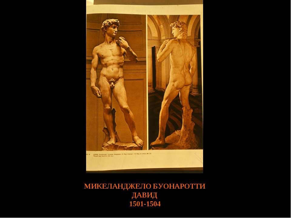 МИКЕЛАНДЖЕЛО БУОНАРОТТИ ДАВИД 1501-1504