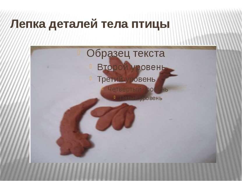 Лепка деталей тела птицы