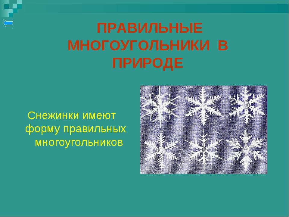 ПРАВИЛЬНЫЕ МНОГОУГОЛЬНИКИ В ПРИРОДЕ Снежинки имеют форму правильных многоугол...