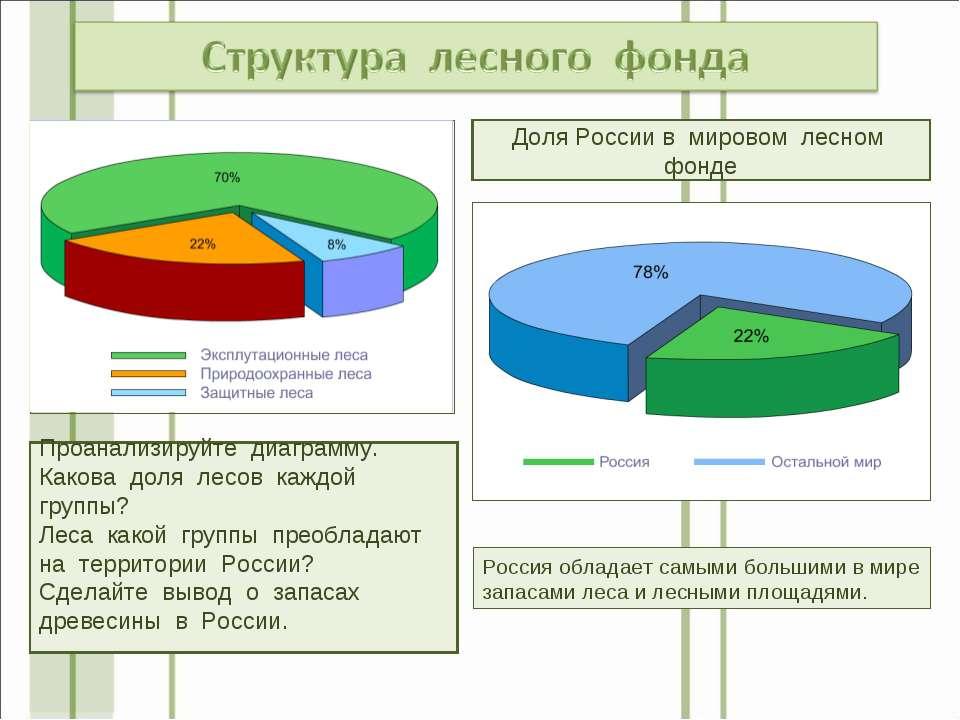 Проанализируйте диаграмму. Какова доля лесов каждой группы? Леса какой группы...