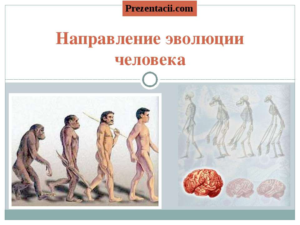 Направление эволюции человека