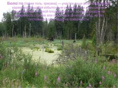 Боло то (также топь, трясина) — участок суши (или ландшафта), характеризующий...