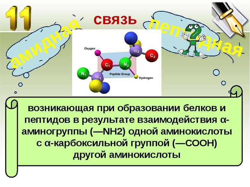 возникающая при образовании белков и пептидов в результате взаимодействия α-а...