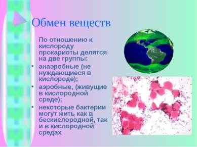 Обмен веществ По отношению к кислороду прокариоты делятся на две группы: анаэ...