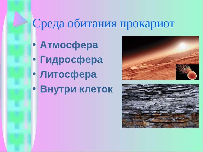 Среда обитания прокариот Атмосфера Гидросфера Литосфера Внутри клеток