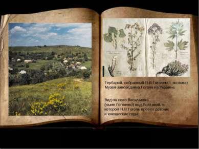 Гербарий, собранный Н.В.Гоголем, - экспонат Музея-заповедника Гоголя на Украи...