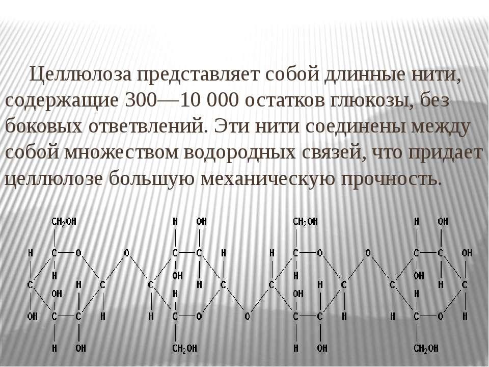 Целлюлоза представляет собой длинные нити, содержащие 300—10 000 остатков глю...