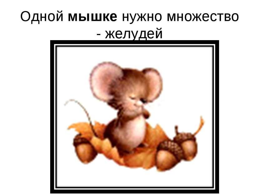 Одной мышке нужно множество - желудей