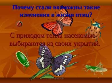Анатольева Э.В. Почему стали возможны такие изменения в жизни птиц? С приходо...