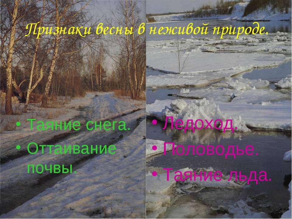 Анатольева Э.В. Признаки весны в неживой природе. Таяние снега. Оттаивание по...
