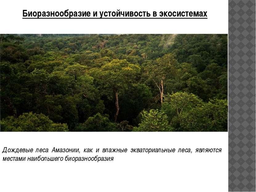 Потоки вещества и энергии в экосистемах Принципиальная схема потоков вещества...