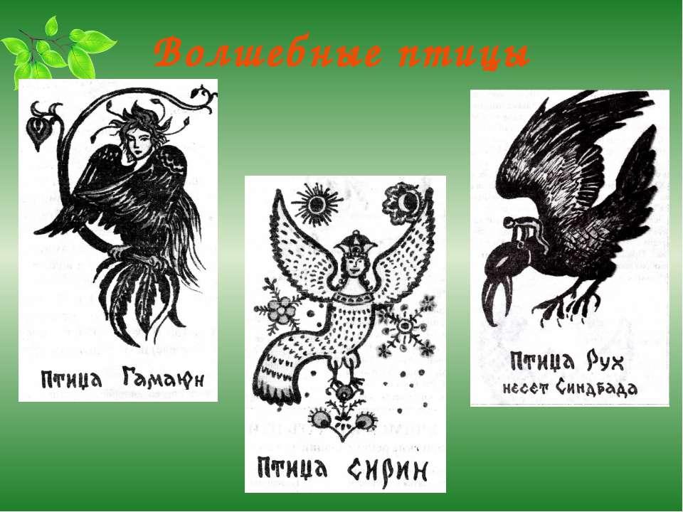 Волшебные птицы