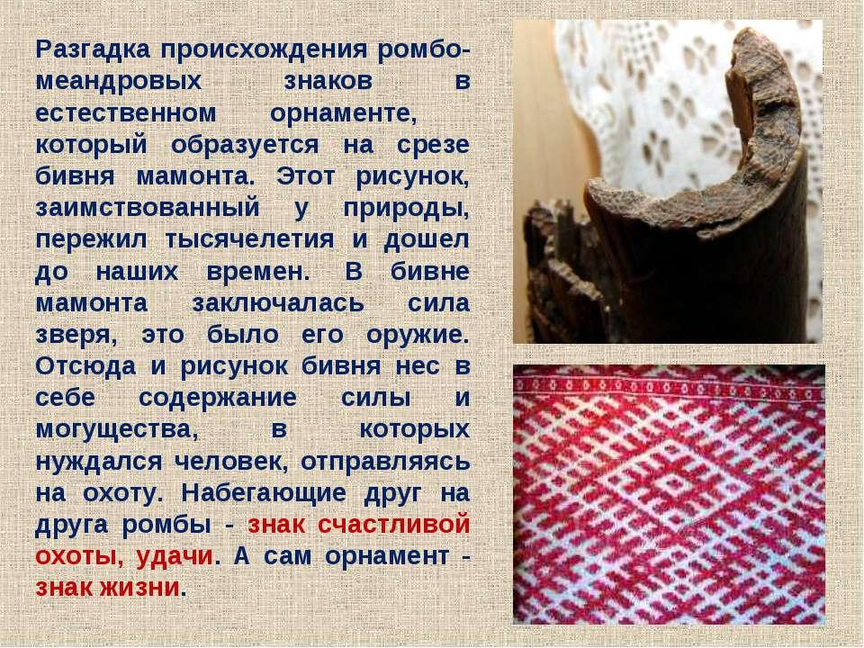 Разгадка происхождения ромбо-меандровых знаков в естественном орнаменте, кото...