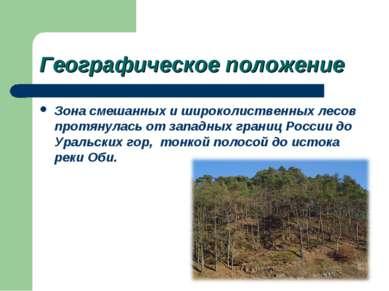 Географическое положение Зона смешанных и широколиственных лесов протянулась ...