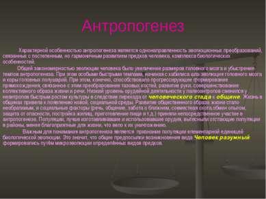 Антропогенез Характерной особенностью антропогенеза является однонаправленнос...