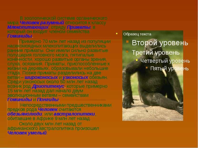 В зоологической системе органического мира Человек разумный относится к класс...