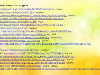 http://www.animalsglobe.ru/wp-content/uploads/2015/07/homyak.jpg - хомяк http...