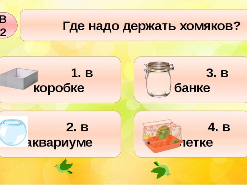 Где надо держать хомяков? В2 2. в аквариуме 1. в коробке 3. в банке 4. в клетке