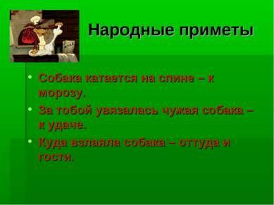 Народные приметы Собака катается на спине – к морозу. За тобой увязалась чужа...