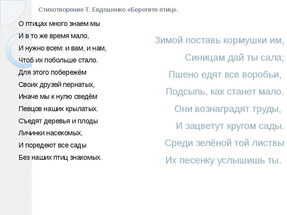 Стихотворение Т. Евдошенко «Берегите птиц». О птицах много знаем мы И в то же...