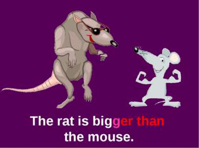 The rat is bigger than the mouse.