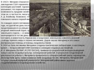 В1913г. Мичурин отказался от предложения Департамента земледелия США переех...