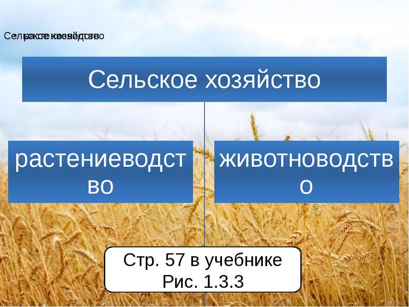 Стр. 57 в учебнике Рис. 1.3.3