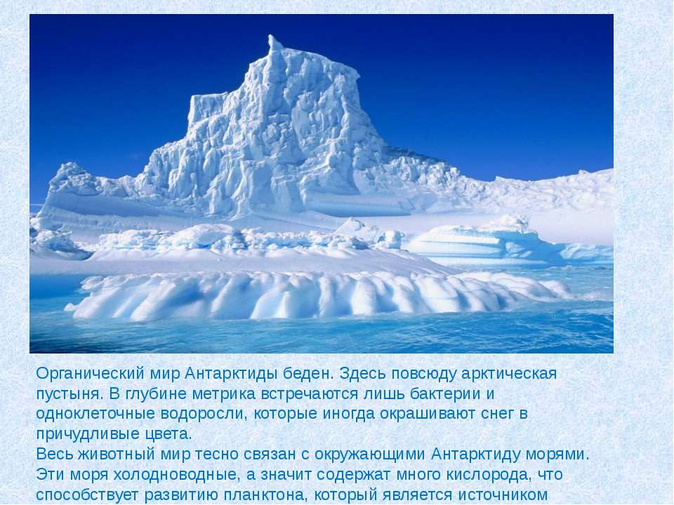 Органический мир Антарктиды беден. Здесь повсюду арктическая пустыня. В глуби...
