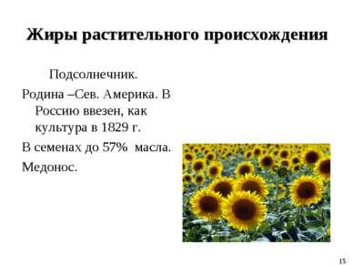 Жиры растительного происхождения Подсолнечник. Родина –Сев. Америка. В Россию...