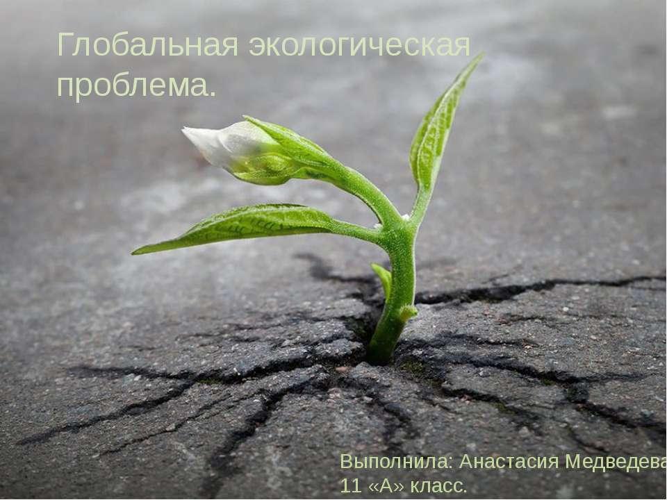 Глобальная экологическая проблема. Выполнила: Анастасия Медведева, 11 «А» класс.