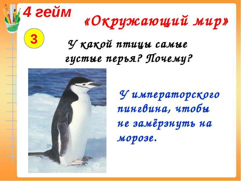 4 гейм «Окружающий мир» 3 У какой птицы самые густые перья? Почему? У императ...