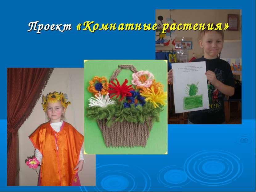 Проект «Комнатные растения»