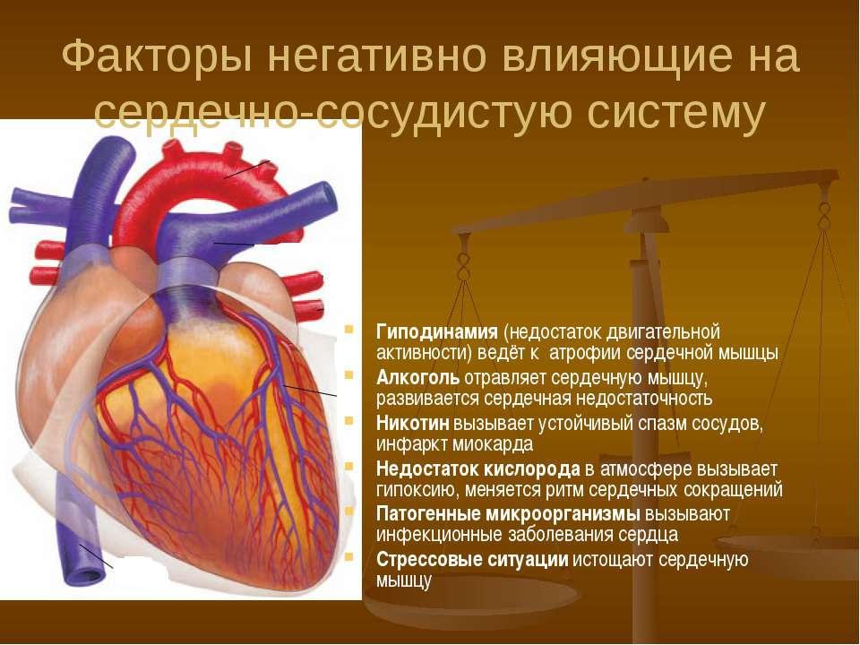 Факторы негативно влияющие на сердечно-сосудистую систему Гиподинамия (недост...