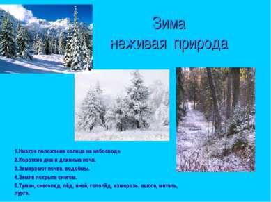 Зима неживая природа 1.Низкое положение солнца на небосводе 2.Короткие дни и ...