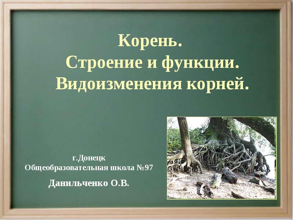 Корень. Строение и функции. Видоизменения корней. г.Донецк Общеобразовательна...