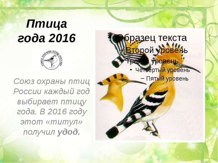Птица года 2016 Союз охраны птиц России каждый год выбирает птицу года. В 201...